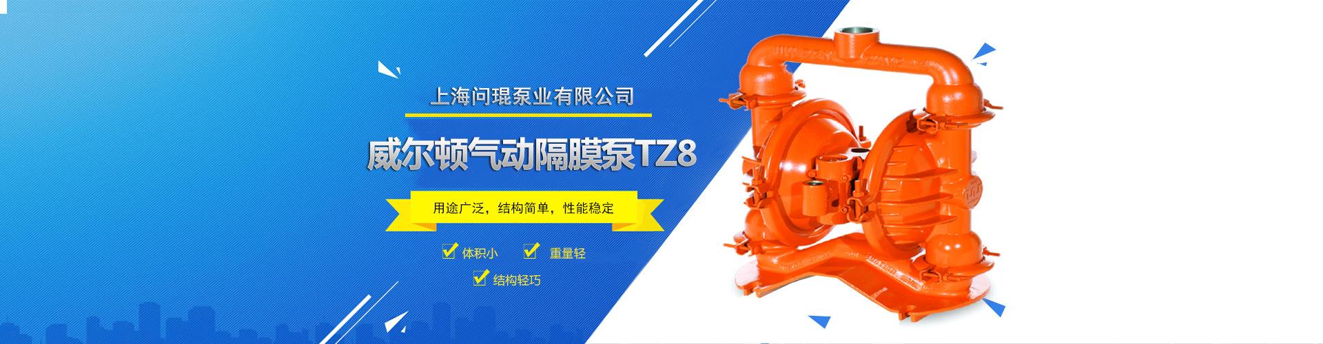 威尔顿气动隔膜泵TZ8